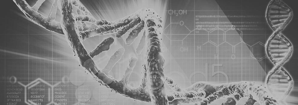 logica bioneuroemotionala raluca rotaru